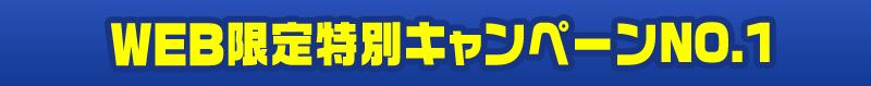 WEB限定特別キャンペーンno.1